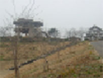 taiyo2001